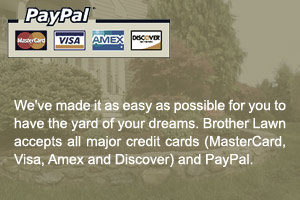 Pay with Credit Cards or PayPal
